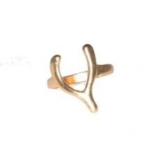 Gouden Lucky Bone Ring