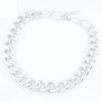 Lange Zilveren Chain Ketting